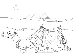 Sitting Camel - Belly Dance Colouring In picture